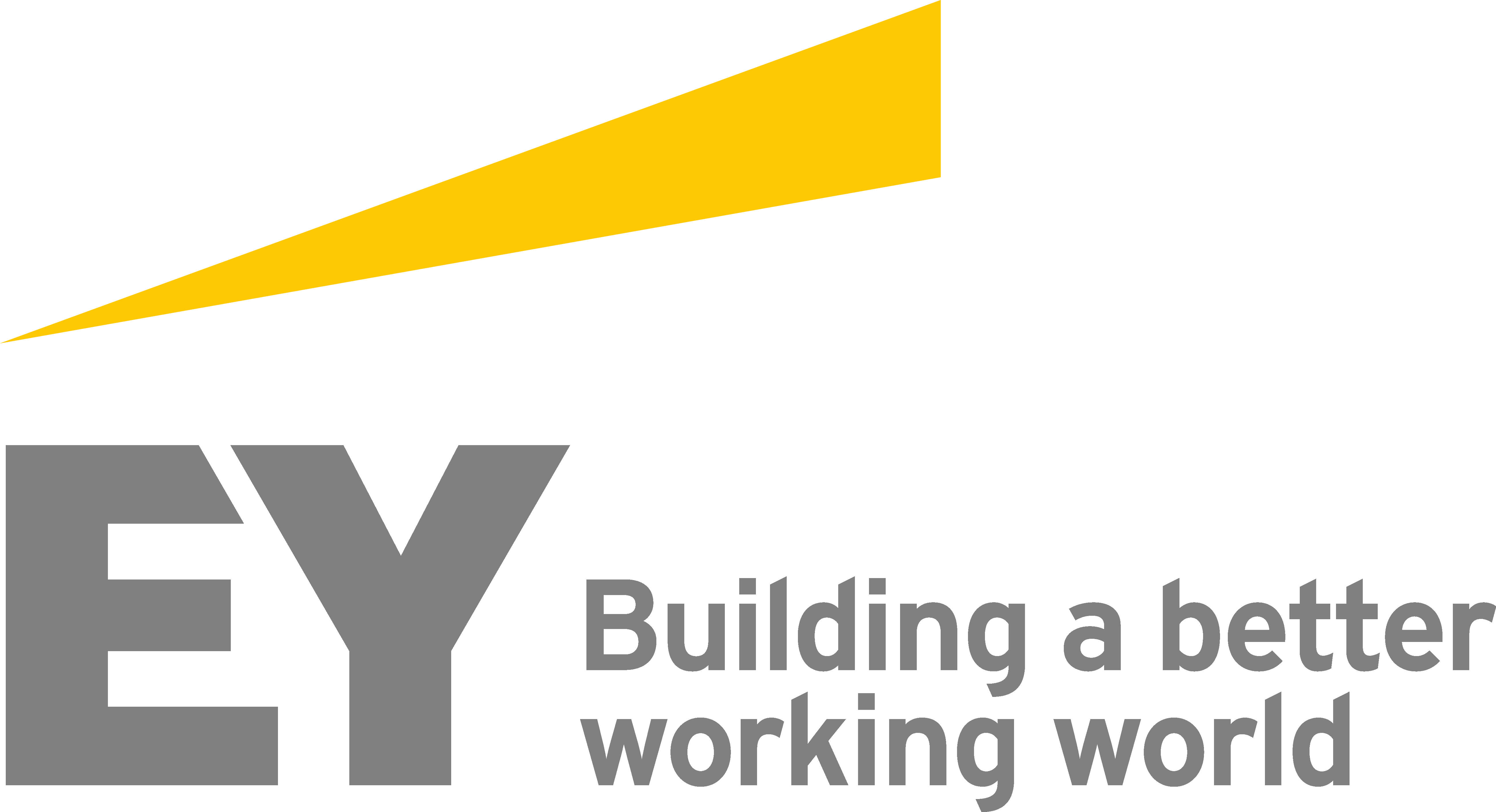 EY South Africa